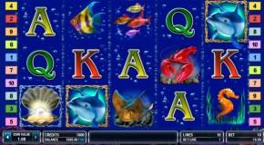 Особенности игрового автомата Dolphins Pearl Deluxe