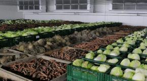 Ткачев считает необходимым строить овощехранилища